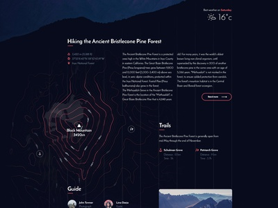 Ancient Bristlecone Pine Forest — Mountain trail topography map ui hike guide park national trail mountain