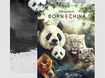 Born In China Keyart photoshop retouch art china disney keyart