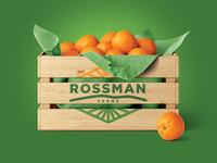 Rossman Farms Logo citrus produce oranges fruit grocery produce mountains sun field farm logo logo farm