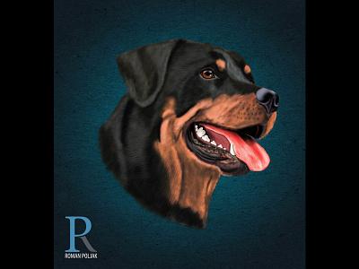 Rottweiler Dog high detail realistic photoshop rottweiler illustration poster dog illustration print t shirt print on demand painting rottweiler