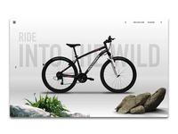 Rockrider Bikes