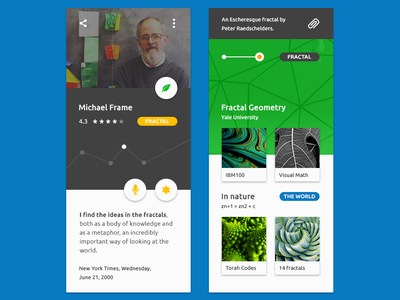 FREE Quadruple Ferial UI material ui free web download inspiration fractal design color icon kit interface