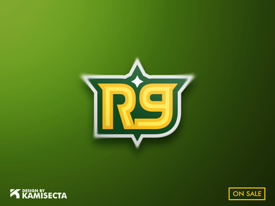 R9 logo - FOR SALE gaming lettermark brand flash lettering vector design streaming emblems stream esports logo letter r9