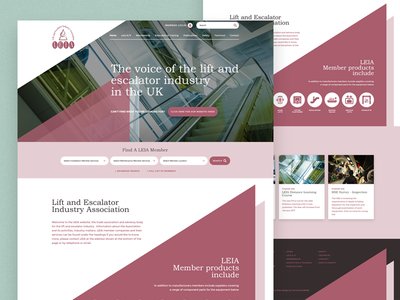 LEIA - Lift and Escalator Industry Association website uk design ui minimal leia landing page home