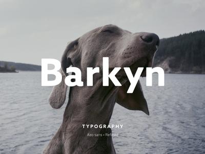 Barkyn Logo typography scytale logo dogs branding brand barkyn animals