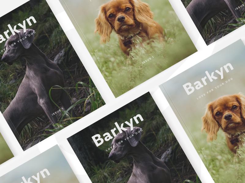 Barkyn Mag pet magazine editorial design dog cover barkyn animal