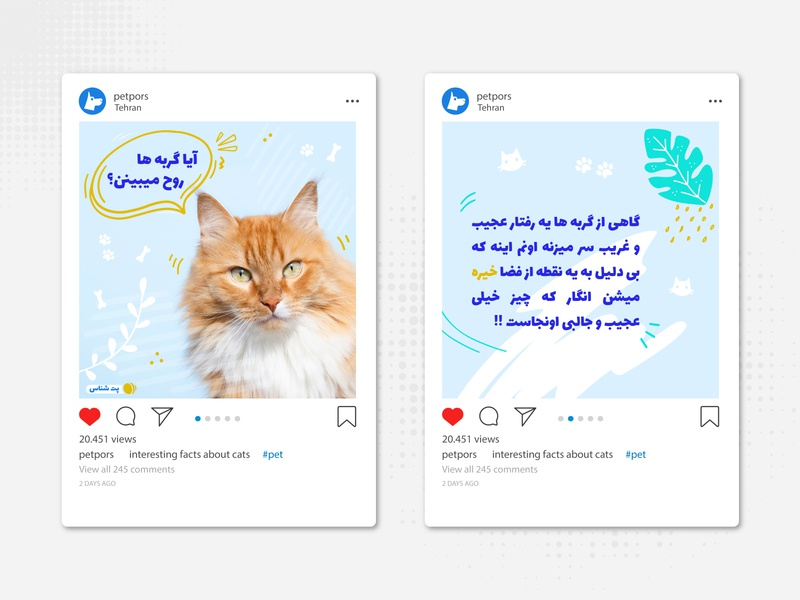 Instagram Posts ui influencer advertising identity design ecommerce fatemeh.a fatemehalibakhshi fabistudio.com pet shop cat animals pet care pet branding socialmedia avatar instagram banner instagram stories instagram post instagram