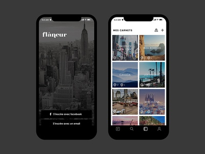 Flaneur travel app ui