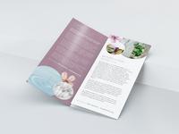 Brochure mock 3