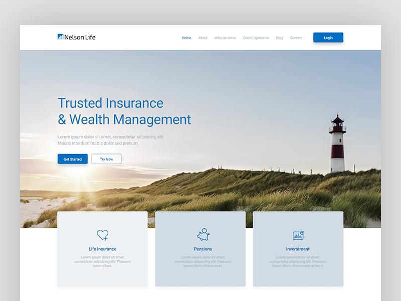 Nelson Life - Web Design web  design web design