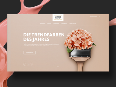 Wall Colour Website wall colour colour responsive design web-design design ux ui slideshow slider teaser homepage website