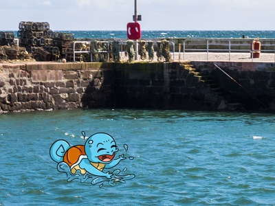 Squirtle Spotted! photo photography illustration go pokemon harbour arbroath
