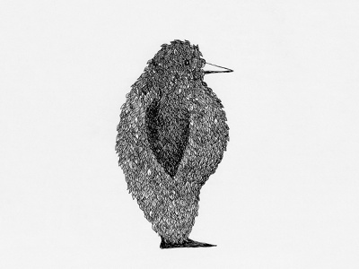 Ernie - CD cover retro black  white animal nature design ink detailed pattern bird illustration music