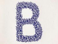 Letter B for Beldi