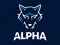 Alpha Hockey Jersey