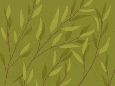 Tea tree illustration digital art illustration pattern design plant
