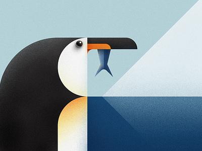 Penguin illustrator illustration polar wildlife sea ocean fish snow ice antarctica antarctic winter penguin
