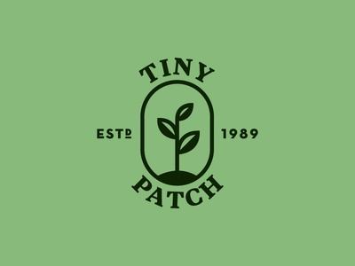 Tiny Patch Logo leaves type identity illustration logo