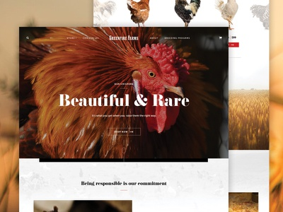 Greenfire Farms web design ui design website chicken farm ui agency taproot chidozie farms fire green