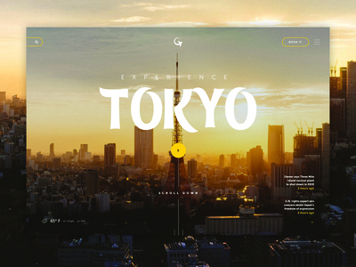Go Tokyo Traveling Site