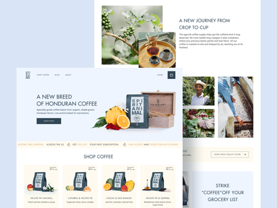 Spirit Animal Coffee product card ui ecommerce sale reviews landing coffee home page store design shop