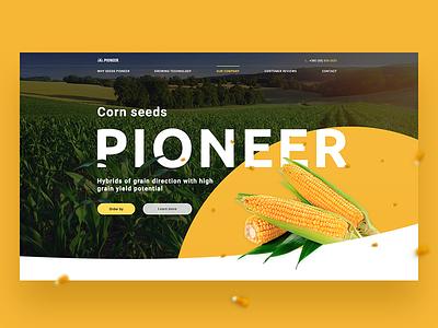 DuPont Pioneer ui agriculture corn landing page banner landing design