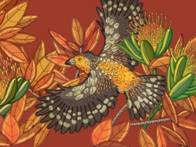 Crested Barbet textile bird illustration nature illustration illustration bird