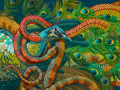 Peacock and Snake illustration educational nature print poster snake peacock photoshop
