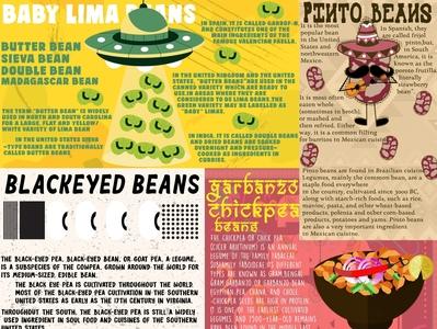 Beans editorial editorial illustration illustrations creative illustrator foodie foodillustration challenge instagram handmade characterdesign lettering typography doodleart oddbodies vector illustration