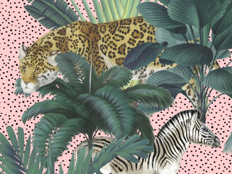 Royal Palms zebra tiger leopard animals tropical leaves royal palms tropical amazon jungle fabrics art illustration florals design textiles seamless prints patterns