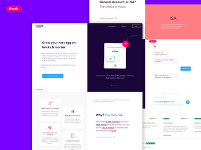 Homepage for Octopus Choice chat chatbot money fintech minimal user experience user interface ux ui design web webdesign