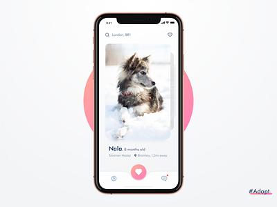 Adopt beautiful adopt dog app concept ux design user interface design ui  ux