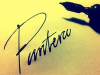 Pantera / A Panther