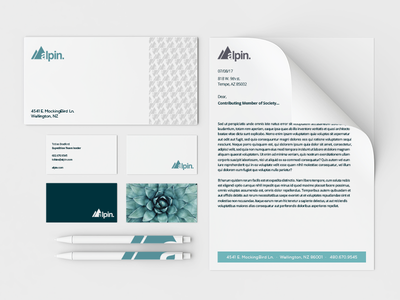 Alpin Brand Identity digital type font collateral brand identity-system branding webpage ux user-experience ui desktop