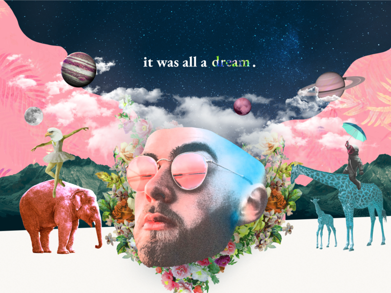 It was all a dream. animals planets face design collage art