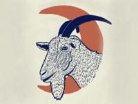 Big Moon Goat Milk