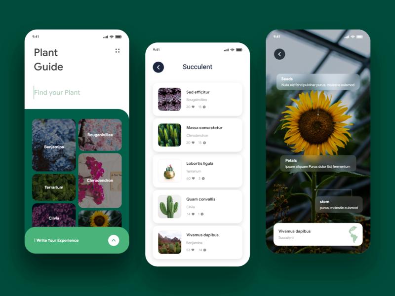 PLANT GUIDE APP app hamburger menu serach uidesign uxdesign ux uiux ui social media florist flower plant design cta button color