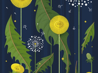 Dandelion field summer yellow green blue design illustration vector