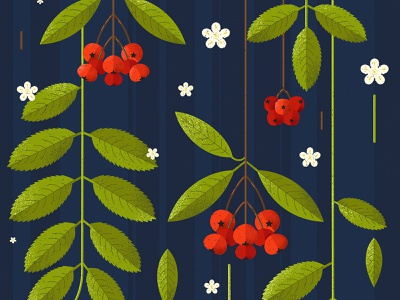 Ashberry plant illustration rowan texture flowers orange red tree plants leaves green blue design illustration vector