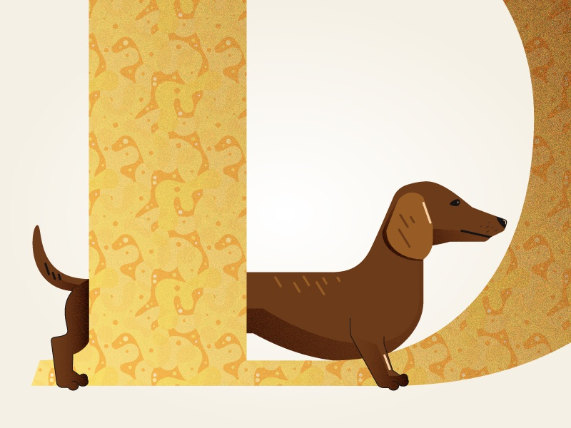 D Is For Dachshund yellow brown dachshund animals 36 days of type illustration vector dog