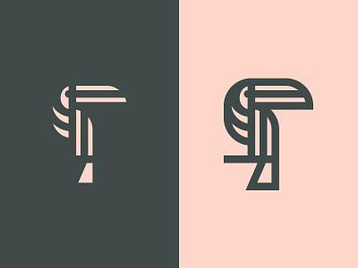Toucan illustration branding design icon logo bird toucan