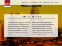 Website for BLiNQ Media