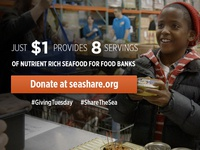 Giving Tuesday : SeaShare