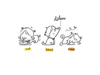 Doge's Life Cycle