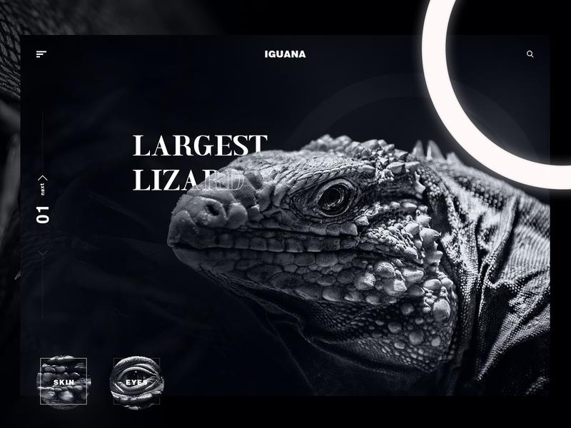 IGUANA minimal lizard ui iguana ui black ui bw bw ui black and white lizard iguana flat clean interaction design web design ui web