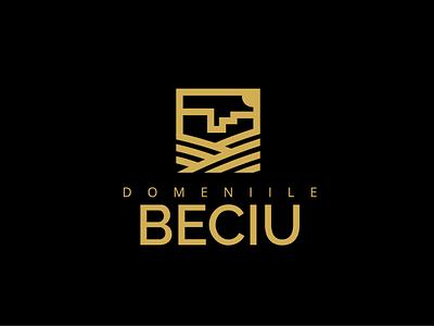 DOMENIILE BECIU logo vector illustration typography logo icon design branding