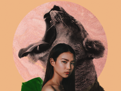 Lioness Power animal woman photoshop texture collageart collage design