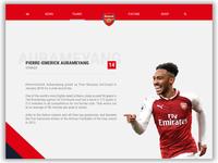 Arsenal Player Profile Website