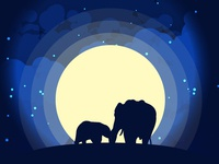 Wildlife at Night on a hill