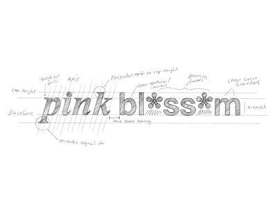 Pink Blossom I brandidentity skincare sketch process identity branding lettering typography logo